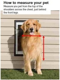dog door measure